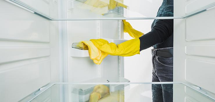 Fridge Cleaning Habits